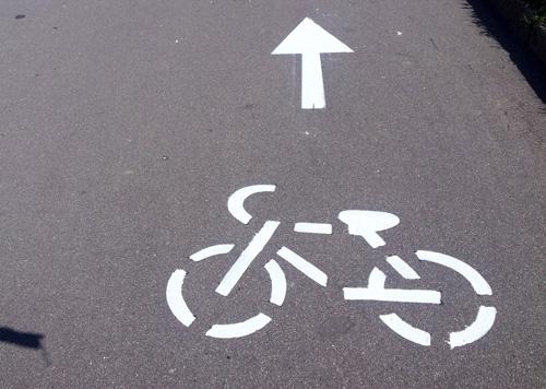 Велосипедная разметка на набережной Александра Невского