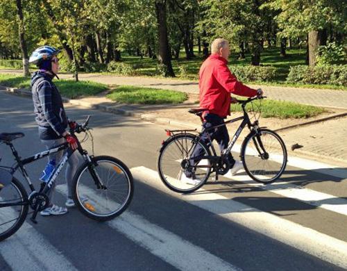 Губернатор и депутат переходят дорогу на велопрогулке