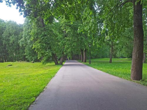 Дорожки Кремлёвского парка