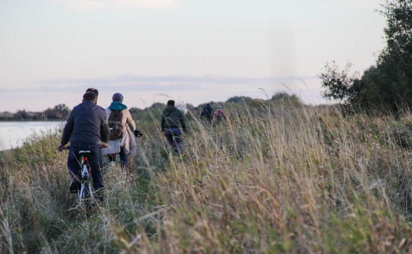Проект велодорожки в Юрьево не будут заказывать в 2016 году