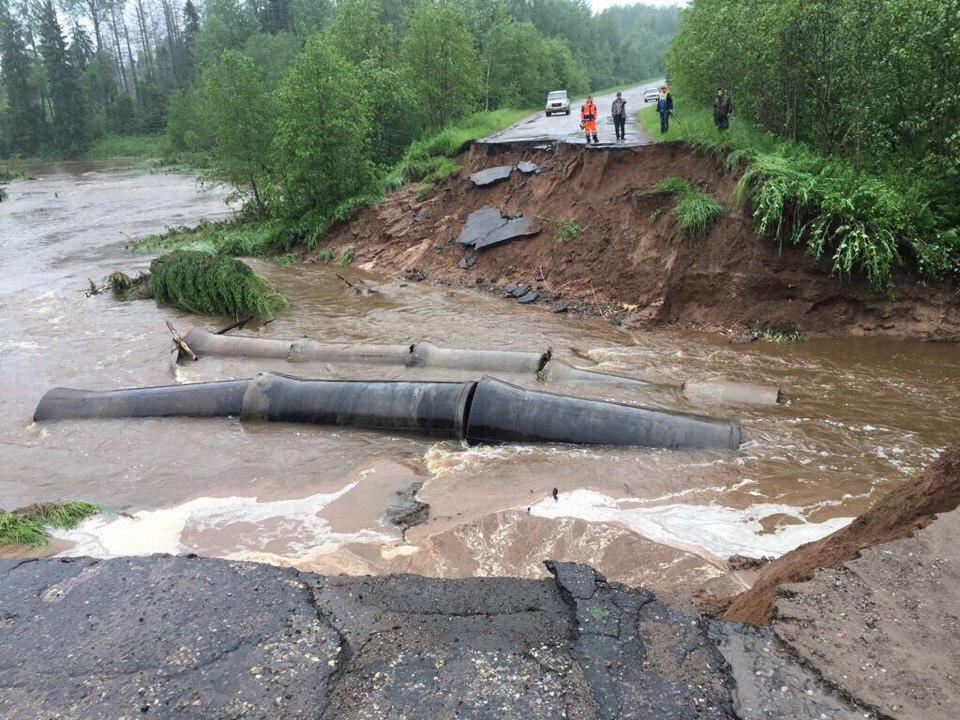 Наводнение в Любытинском районе