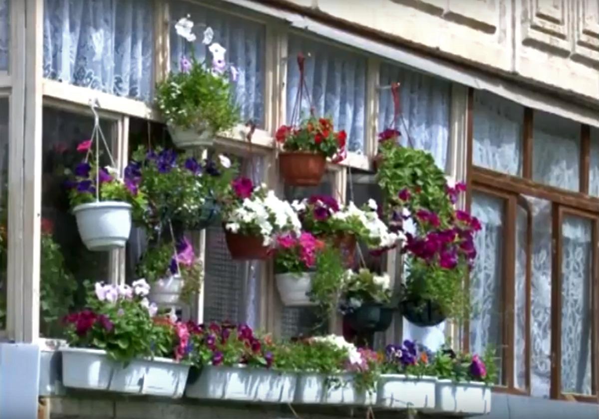 Самый цветущий балкон