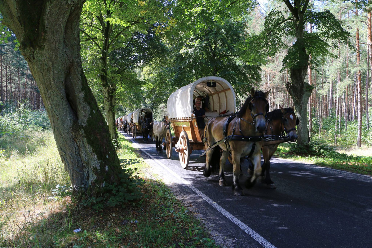 Titanen on Tour 2018: Лошади несут мир