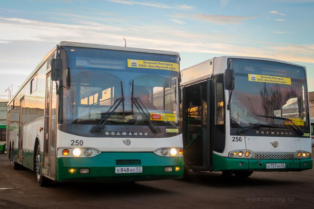 Автобусы из Санкт-Петербурга