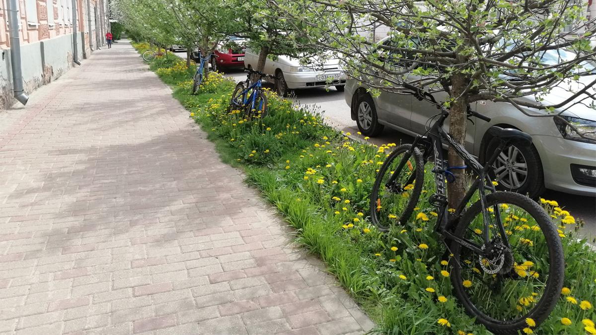 Велосипеды у первой гимназии