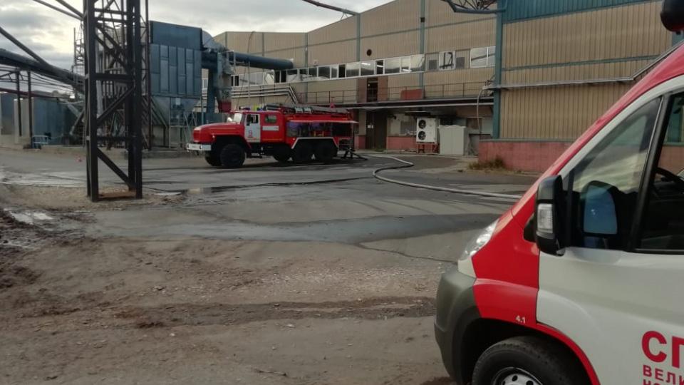 Пожар в Чудовском районе