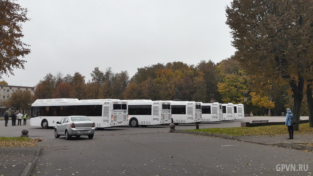 Новые городские автобусы