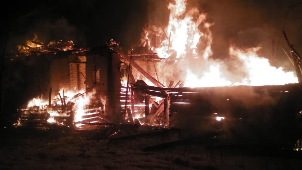 Пожар в Демянском районе