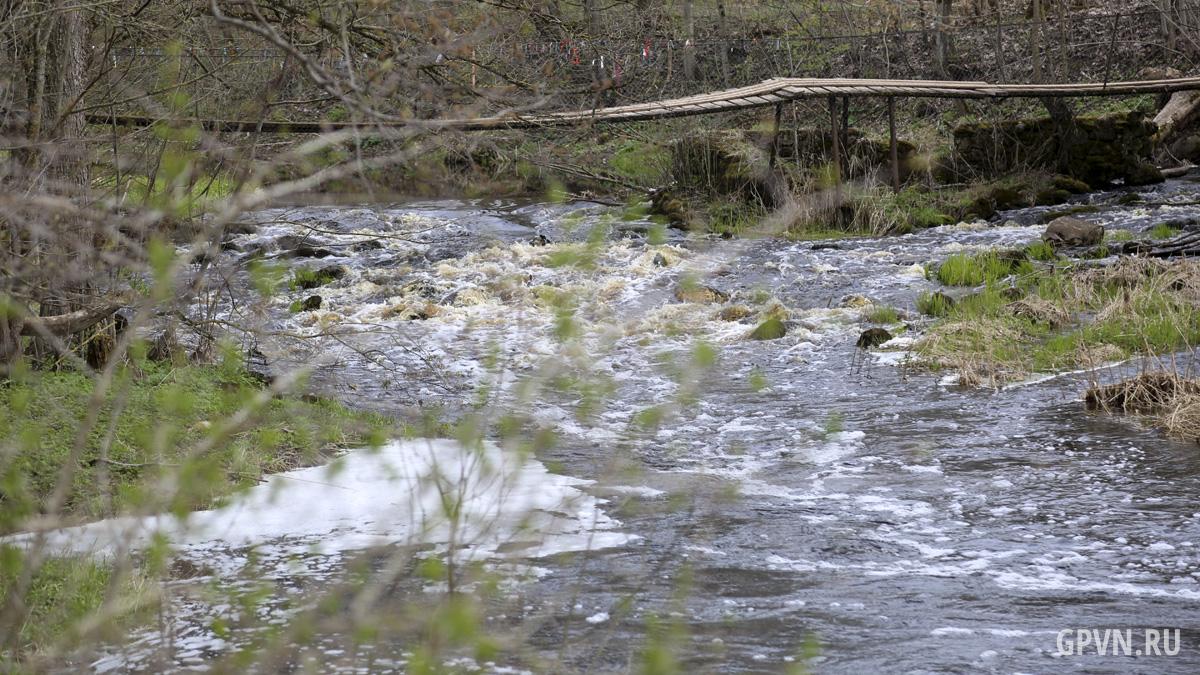Река Леменка