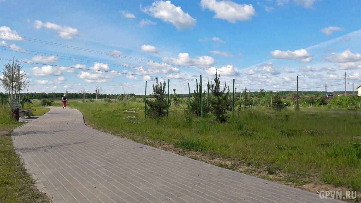 Веряжский парк